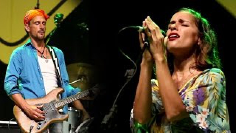 Teach Your Children | Playing For Change Band | Live in Brazil