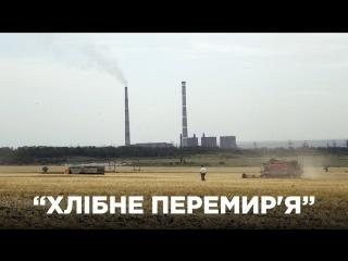 «Хлібне перемир'я» на Донбасі