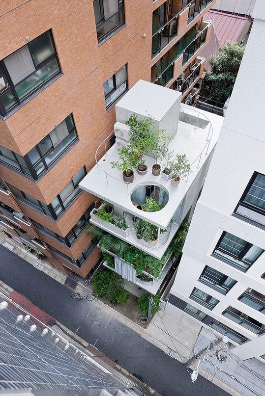 7 САМЫХ ЗЕЛЕНЫХ ЗДАНИЙ  Частный дом в Токио,