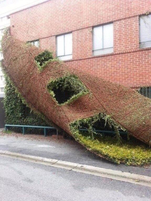 Суть «зелёной» архитектуры