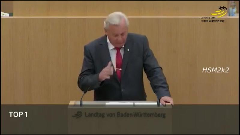 Bernd Gögel hält seine beste Rede Der Bürger hat reale Sorgen, keine Zeit für ihre Späße AfD