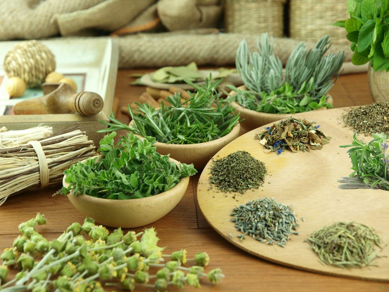 Природные средства от паразитов и травяная терапия