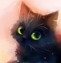 Лина кота