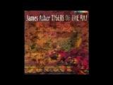 James Asher - Red desert