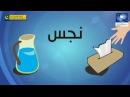 Как мусульманин должен ходить в туалет по Сунне
