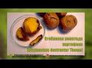 Стеблевая нематода картофеля (Ditylenchus destructor Thome)