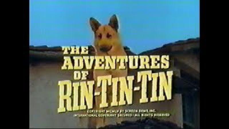 Las aventuras de Rin-Tin-Tin:-Cap 3- **El Puma**