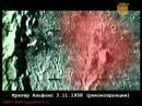Динозавр друг человека / Луна / Лаборатория Х