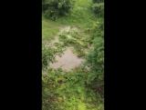 Потоп 07.05 ул.Камышинская, Ульяновск