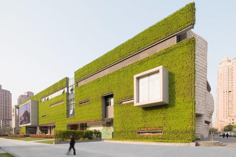 В Шанхае открылся музей естествознания – необычное