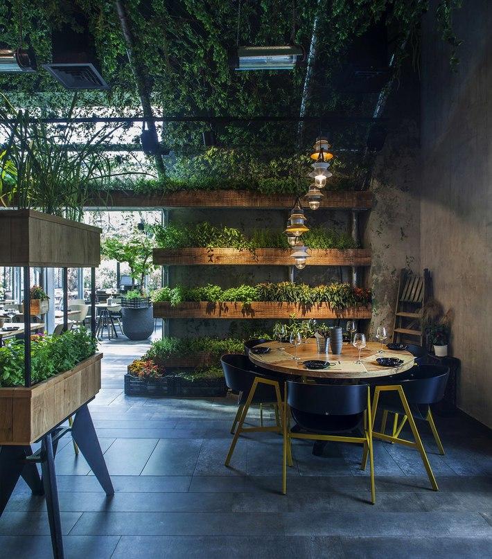 Часть 2. Зелёный ресторан Segev Kitchen Garden Ресторан