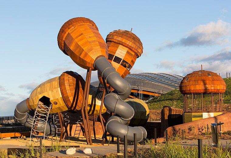 Игровая площадка в национальном дендрарии Австралии.  В