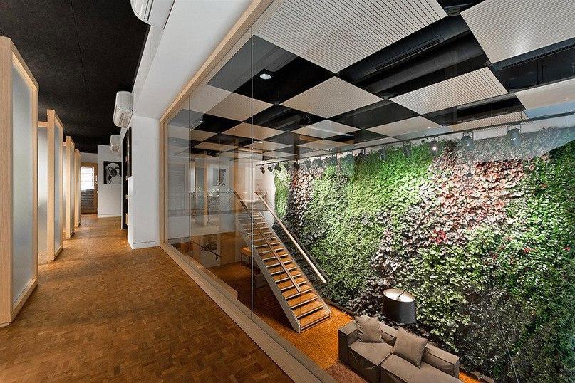 Офис Pixelmator в Вильнюсе  Проектное бюро Plazma Architecture