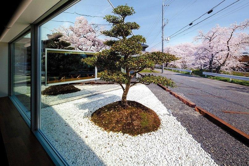 Кафе Mirrors в Японии  Кафе Mirrors — это