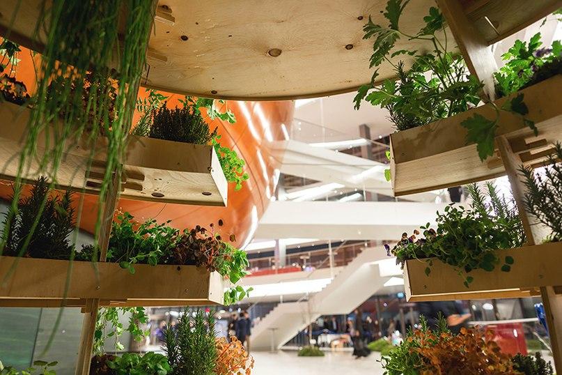 «Зелёная комната»  Датская лаборатория дизайна при поддержке