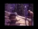 УХОД ОТ ЦИВИЛИЗАЦИИ фильм ( АЛЯСКА ) один в дикой природе человек прожил 35 лет ...