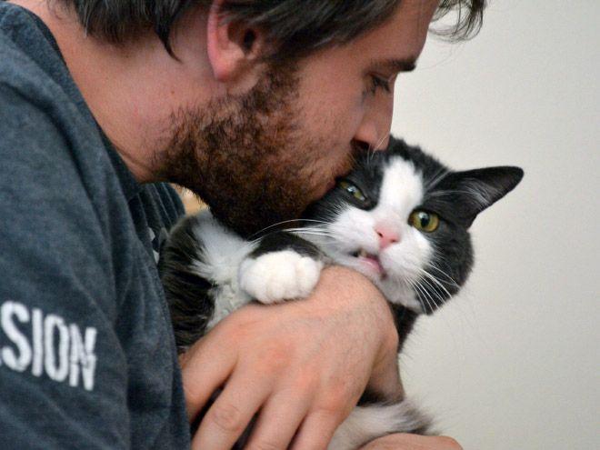 Хреново - это когда кроме кота даже обнять некого, а эта скотина ещё и вырывается