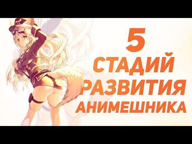 5 стадий развития АНИМЕШНИКОВ в России