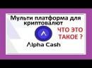 Что такое Мульти платформы криптовалют Alpha Cash?