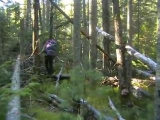 Осенняя уха Охота на сибирских лососей За три перевала Урик