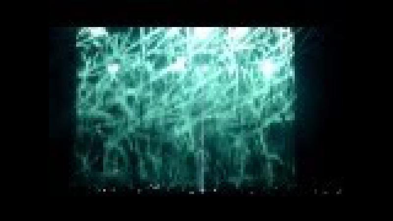 Nightwish Live - Intro (Taikatalvi - Storytime - Wish I Had An Angel) @ Zenith Nantes 18/04/2012