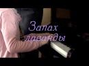 Фильм Запах лаванды 1 часть 2016 Мелодрама @ Русские сериалы