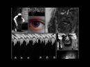 Gojira - Silvera (rus metal cover) [lyric video 2016]