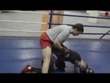Тактика боя в MMA, основные технические действия в ММА, истоки ММА - уроки ММА Олега Курохтина