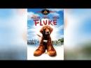 Флюк 1995 Fluke