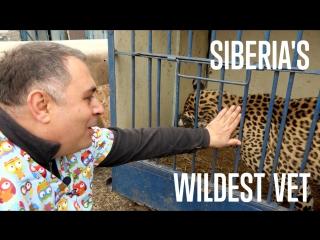 LOCAL HEROES: Siberia's Wildest Vet