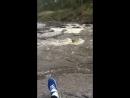 Ревун скалы