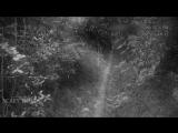 Темная сущность напала в лесу на индийского мальчика