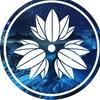 Сибирская ассоциация джиу-джитсу