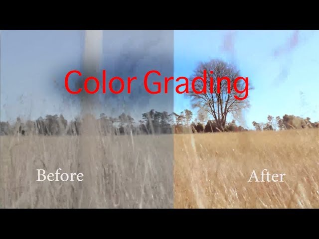How to Color Grade Cinestyle Footage in Adobe Premiere