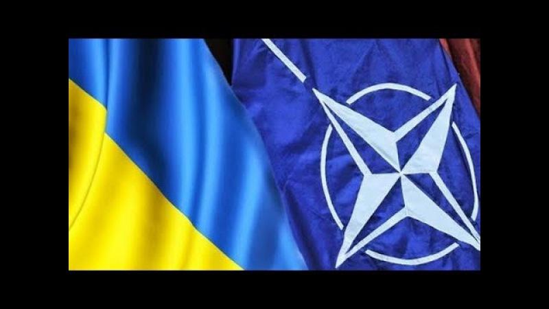 В параде ко Дню Независимости Украины примут участие девять стран HATO.
