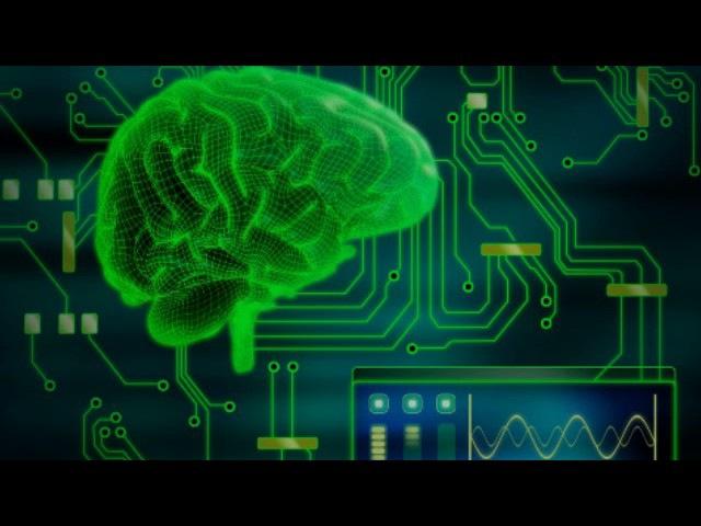 Как работает мозг человека (рассказывает Филипп Хайтович)