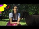 Пародия на клип. Три немки поют весёлую песню о животных. А трактор рум циплёнок