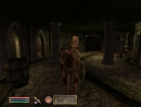 Oblivion s01e46 Великий чемпион