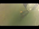 Ласты С4 в деле на вход в глубину 20 метров