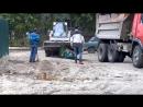 Бобкет против мусорного бака