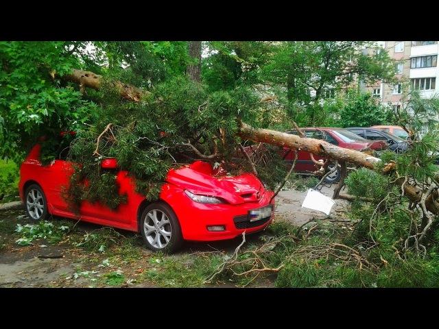 Ужасные последствия Урагана! Есть погибшие... 18