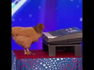 Куриные пьесы, на Фортепиано