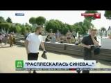 Журналиста НТВ избили в прямом эфире