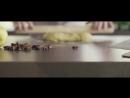 Antolini Presents Azerobact
