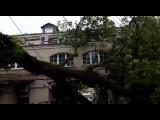 Ураган в Москве 29.05.2017