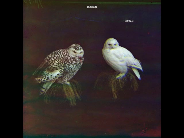 Dungen - Haxan *FULL ALBUM*