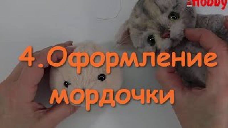 4. Оформление мордочки котенка Тедди. Утяжка. Стрижка. Укладка ворса.