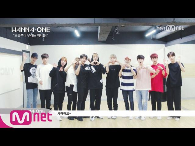 Wanna One Go [워너원스페셜] 워너원이 직접 PICK 했다! 국프님! 오늘부터 우리는... 170803 EP.0