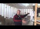 Разведение кроликов калифорнийской породы в ЛПХ Сахон (Харьковская область)