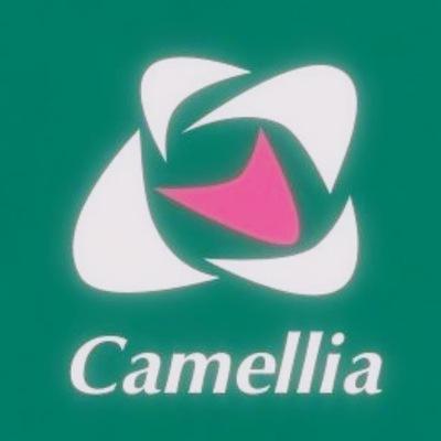 Камелия Камелия